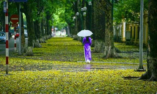 hanoi in rainy day